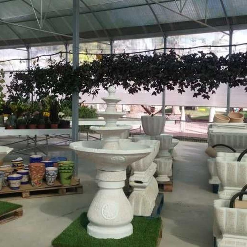 Construcción de fuentes: Productos y servicios de Marga Garden