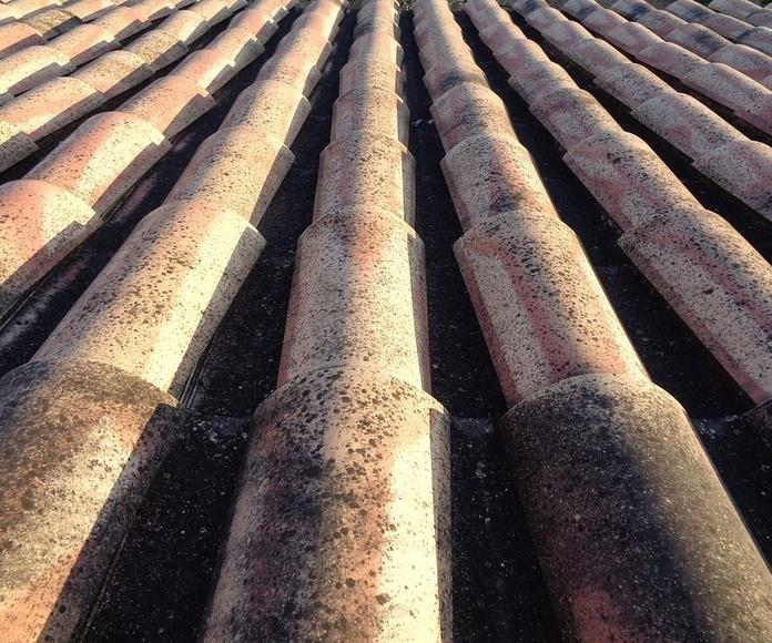 Rehabilitación de tejados: Servicios profesionales de Sanfer Obras, Reformas y Servicios