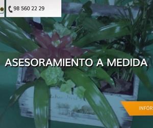 Floristerías en Laviana | Floristería La Salud