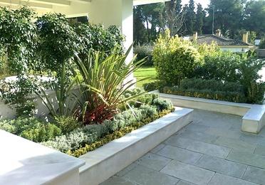Tratamientos de plagas en jardines
