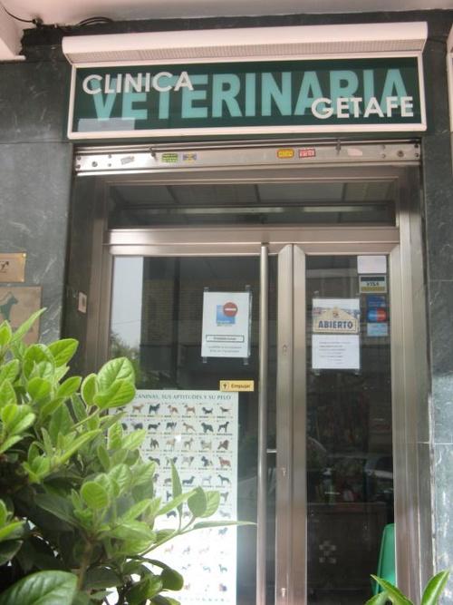 Clinica Veterinaria Getafe- Cita Previa 91-6824854