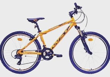 Bicicletas y recambios
