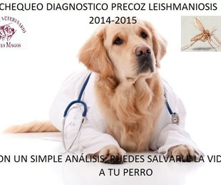 CHEQUEO DIAGNOSTICO PRECOZ LEISHMANIOSIS 2014-2015