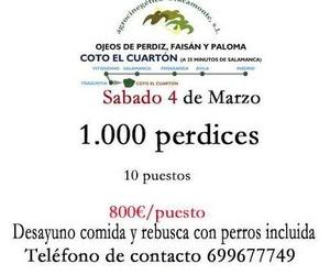 Avicultura y caza menor en Nava de Sotrobal | Perdices Malvecinos