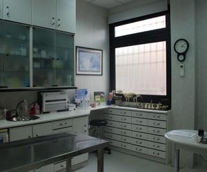 consulta 2 atencion canina  Mostoles http://www.veterinariosmostoles.com/es/