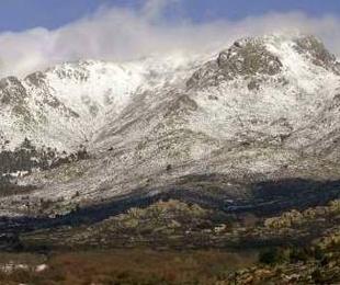 Por la Sierra de Guadarrama, tierra de buena carne