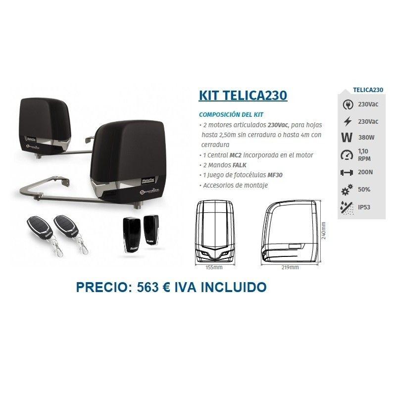 Kit Telica 230: Servicios de Puertas automáticas Odiel