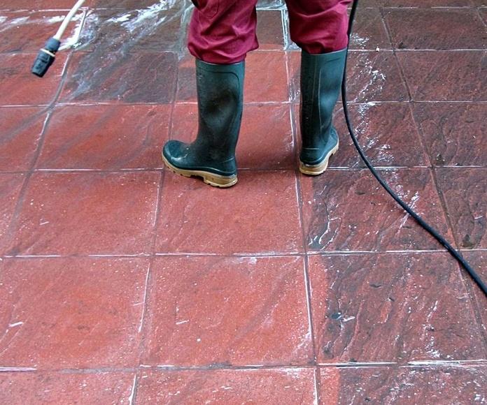 Limpieza y recuperación de suelo