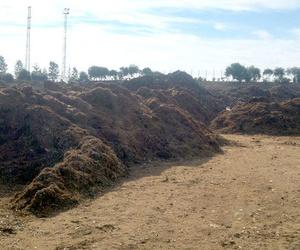 Gestión de residuos en Ecopoda, Sevilla