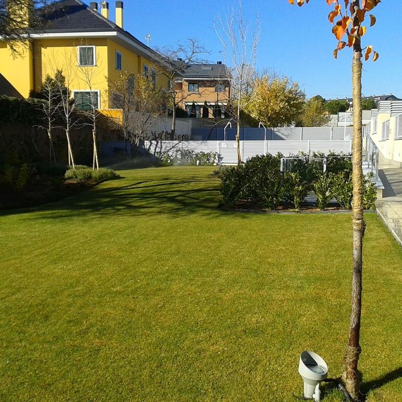 Mantenimientos integrales: Servicios de Jardinería Sefer