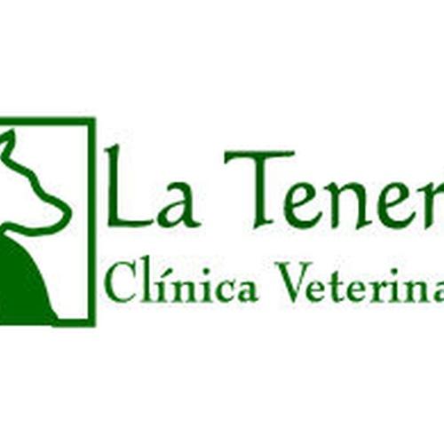 Veterinarios en Pinto   La Tenería Clínica Veterinaria