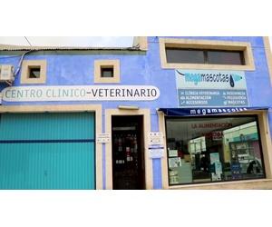 Galería de Veterinarios en Molina de Segura   Megamascotas