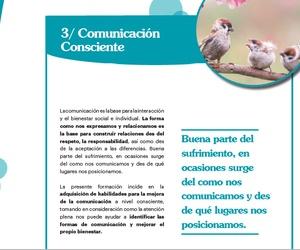 TALLER DE COMUNICACIÓN CONSCIENTE