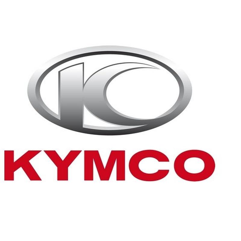 Servicio Técnico Kymco: Servicios de Bizkor Autoak