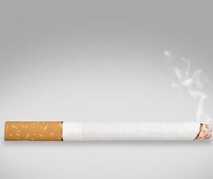 Historia del tabaco y su cultivo