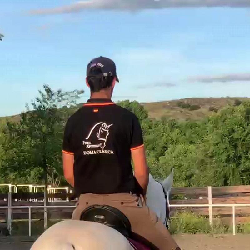 Doma de caballos en Móstoles
