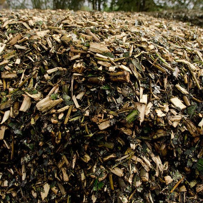 Ventajas de la energía de biomasa