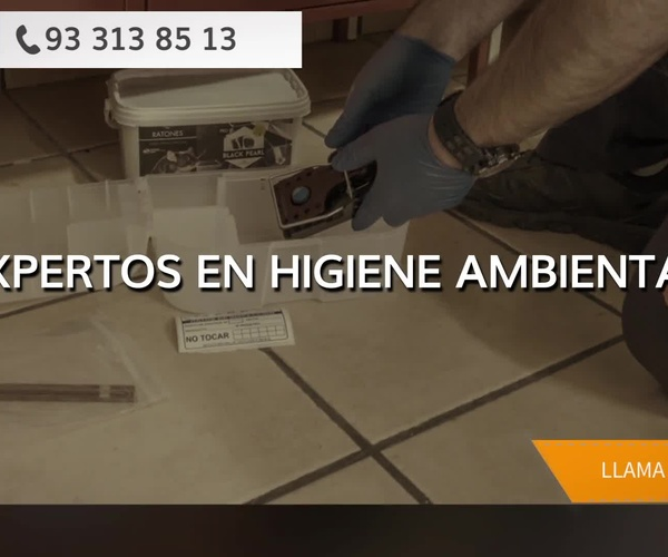 Control de plagas en l'Eixample, Barcelona | AGP Sanidad Ambiental