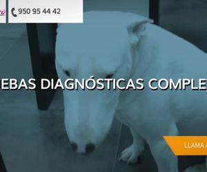 Galería de Veterinarios en Roquetas de Mar | Centro Integral Veterinario VPRO