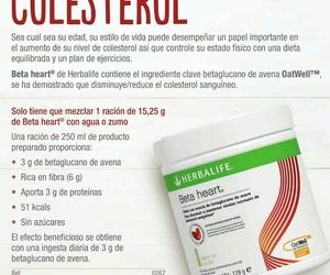 Controla el colesterol en cuatro semanas