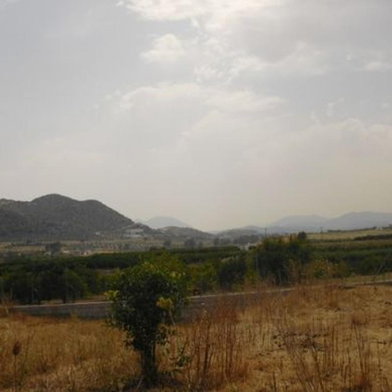 Alhaurín el Grande – Terreno Rustico / Ref.- ID-R2242520: Inmuebles de DreaMarbella Real Estate