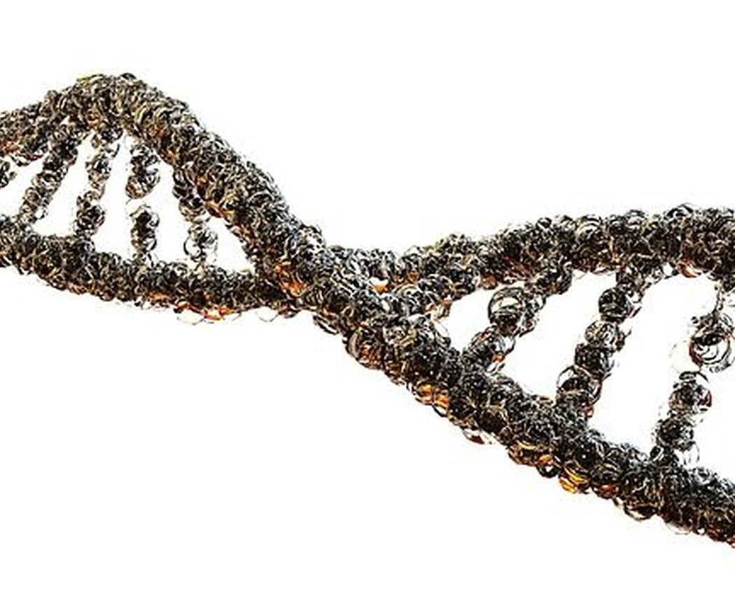 Cómo es una prueba de ADN