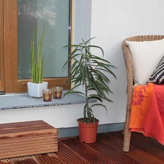 Ideas para decorar tu nueva terraza