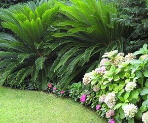 Jardines de comunidades de vecinos