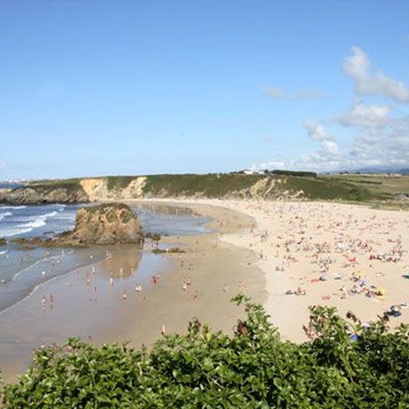 Playas: Servicios de Hotel y apartamentos Penarronda Playa