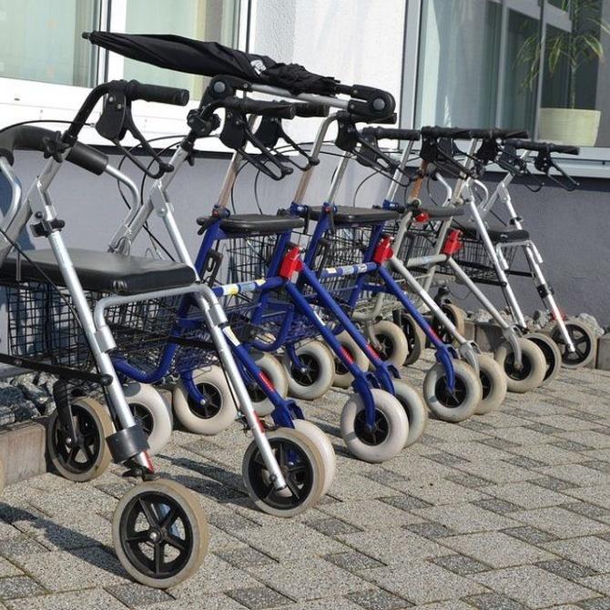 Ayudas a la movilidad: bastones y andadores
