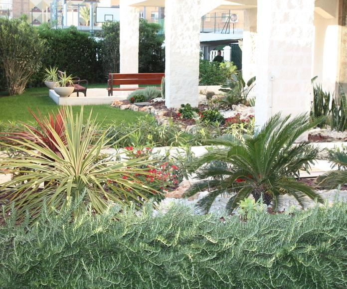 Diseño, construcción y replantación: Servicios de Mantenimientos y Jardinería La Jara