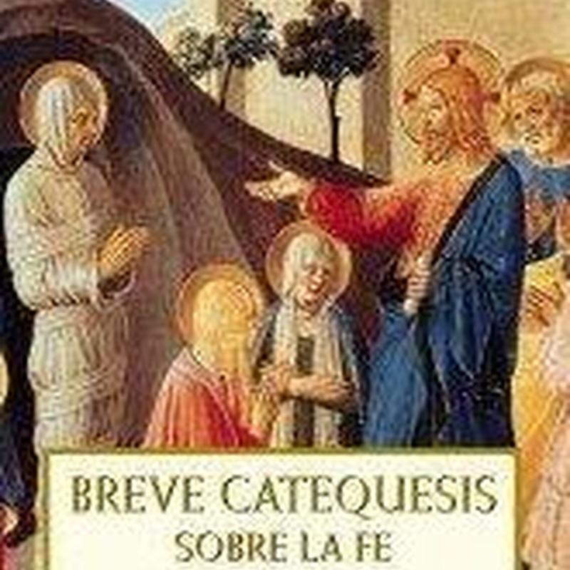 BREVE CATECISMO DE LA IGLESIA CATOLICA MARTIN, SANTIAGO. PLANETA