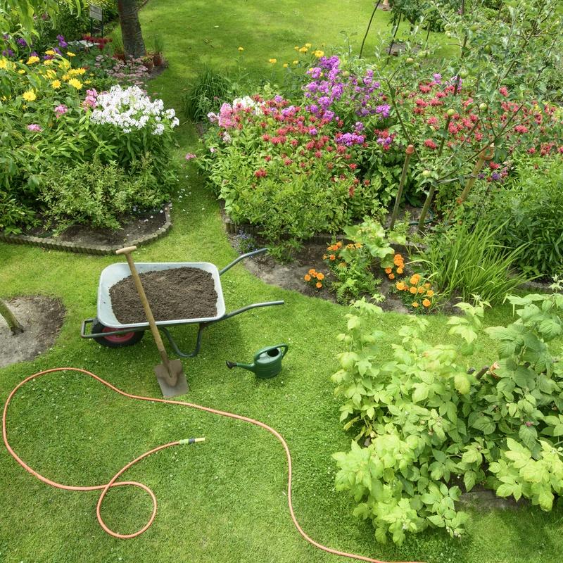 Plantado de jardines: Servicios de Transportes el murciélago