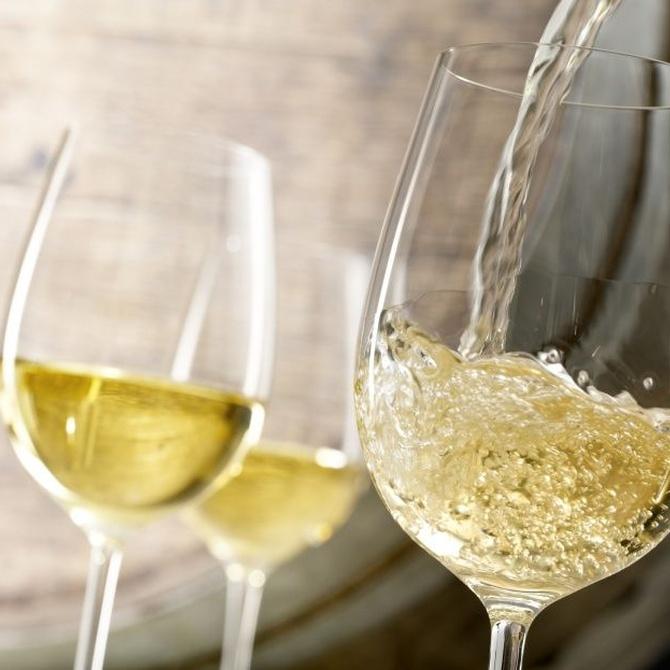 Elige el vino adecuado para cada tipo de comida