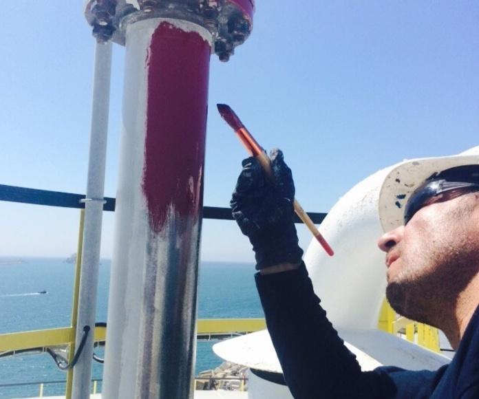 Trabajos de pintura industrial para biodiésel (en proceso)