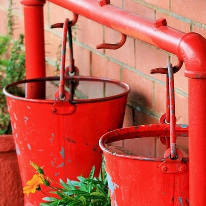Cinco usos del agua de lluvia