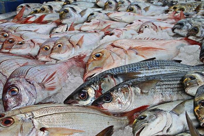 Pescados blancos: Productos de La Barquita de San Vicente