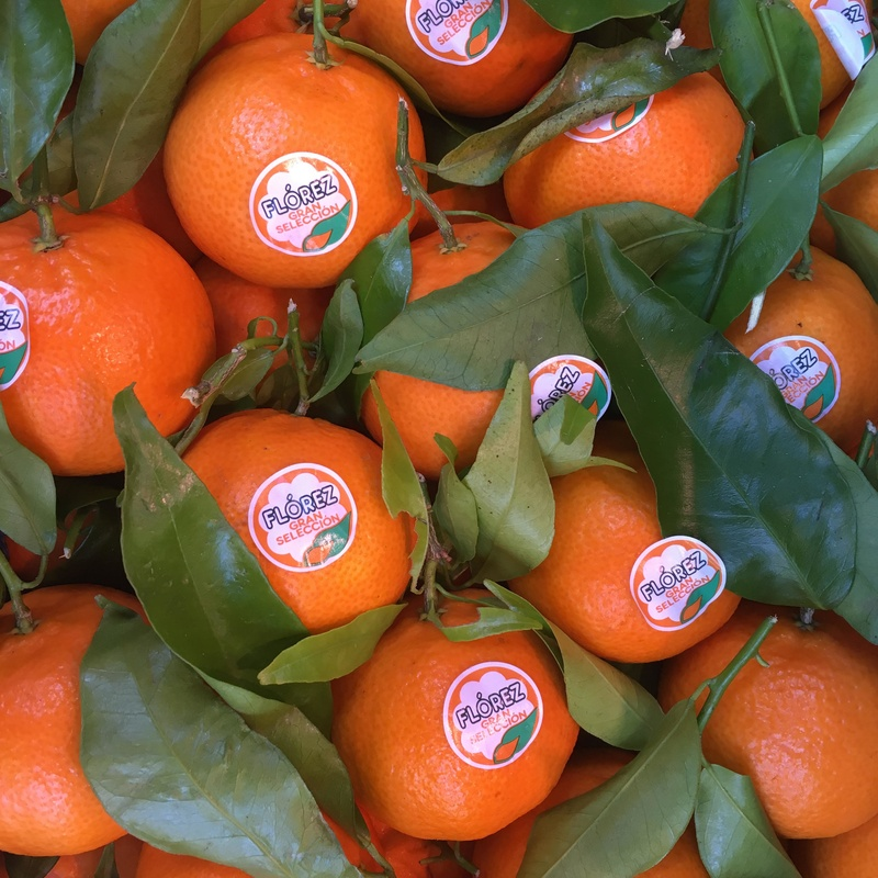 Mandarina Clementina Natural con sus hojas