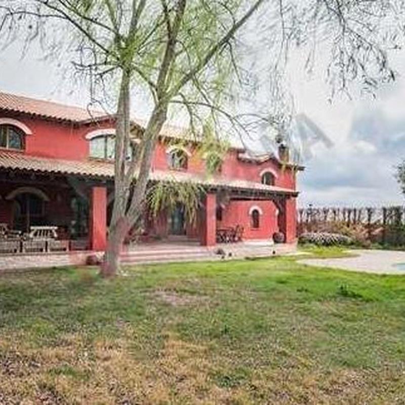 Villa (Casa o Chalet independiente) - Venta - Cubas de la Sagra, Madrid: Inmuebles de Vicente Palau Jiménez - Agente Inmobiliario