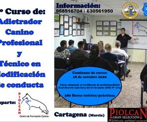8º Curso de Adiestrador y Técnico en modificación de conducta
