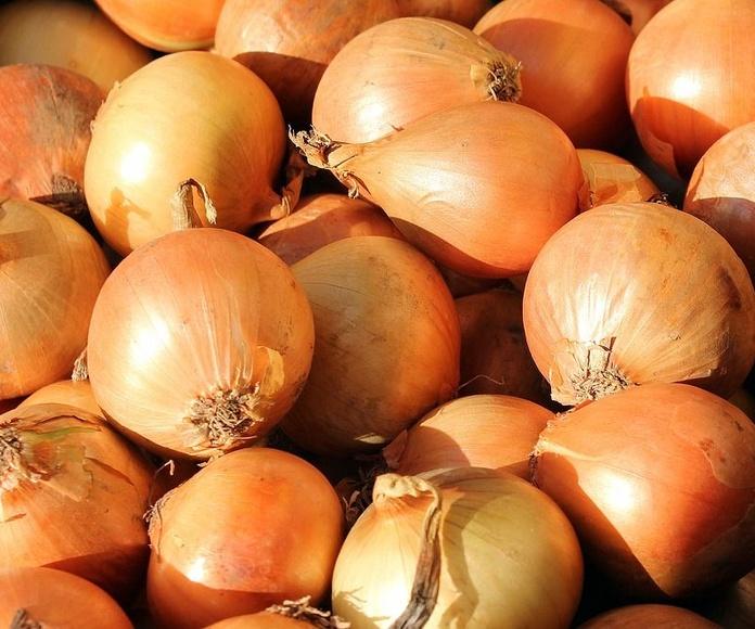Cebolla dulce: Productos y servicios de Ecozara
