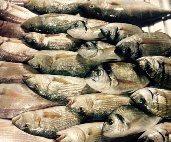 donde comer pescado en puçol