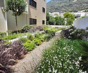 Estudio de paisajismo en Sotogrande | Sotojardín