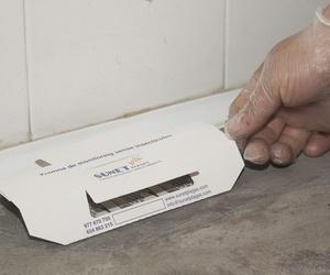 Plan de lucha integrada de plagas en Tarragona