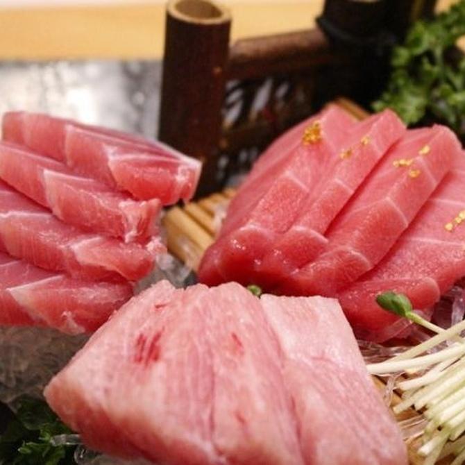 ¿Distingues el atún del bonito?