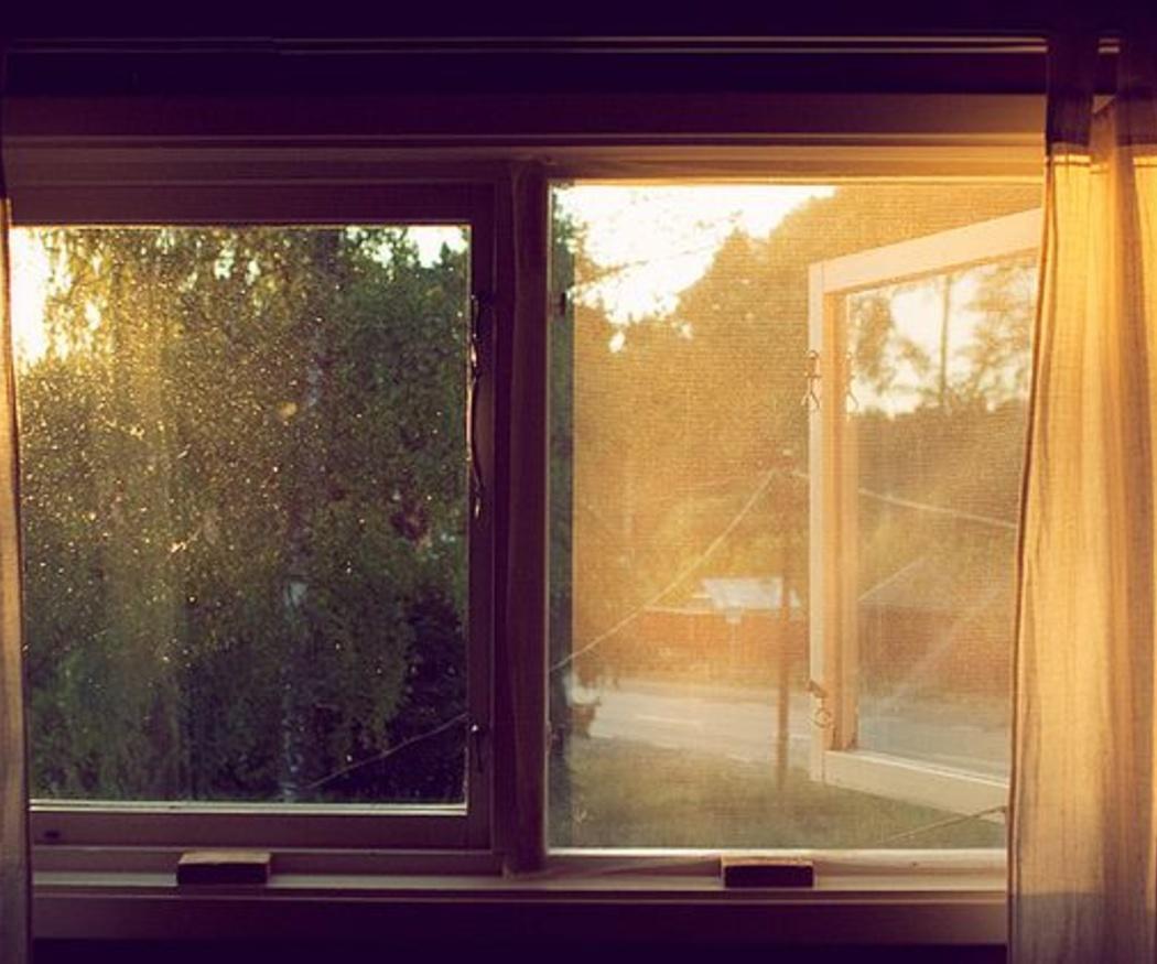 ¿Por qué instalar mosquiteras enrollables en tu casa?