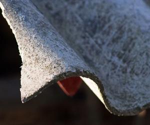 Las potenciales víctimas del amianto