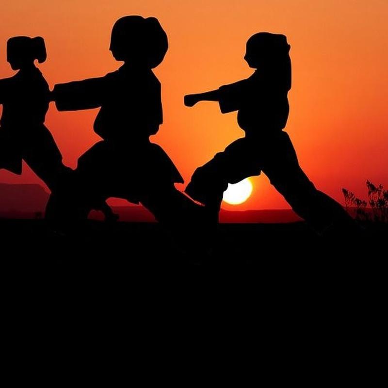 Clases de kárate Shotokan: Nuestras clases de ASIKAN-DO IBIZA