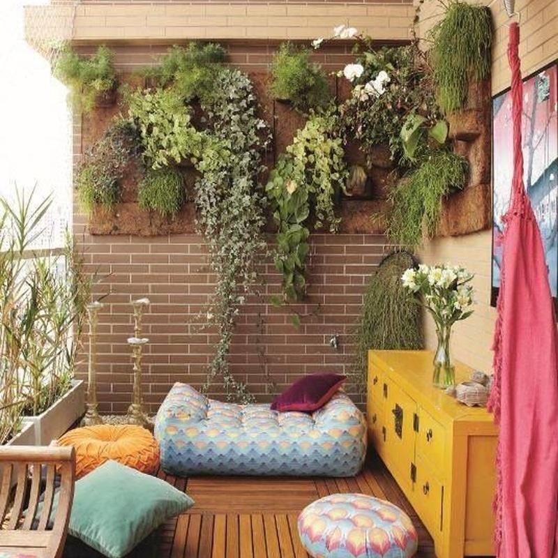 Plantas de exterior: Productos y servicios de Eiviss Garden