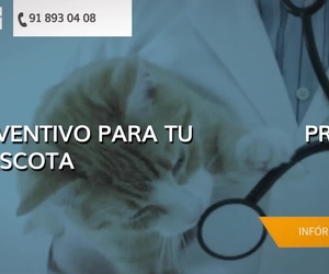 Clínica veterinaria en Ciempozuelos - Centro Veterinario Ciempozuelos